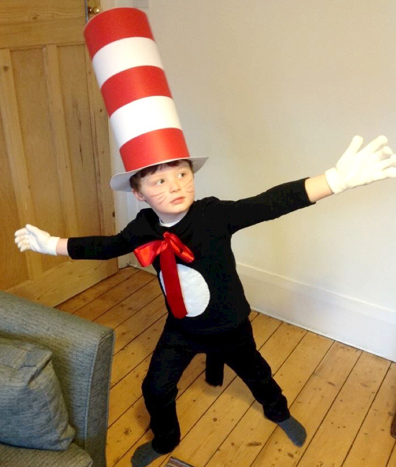 World book day the cat in the hat rainbeaubelle my son takes his dressing up very seriously and for him getting into character for world book day is more than just putting on a costume its weeks of solutioingenieria Choice Image