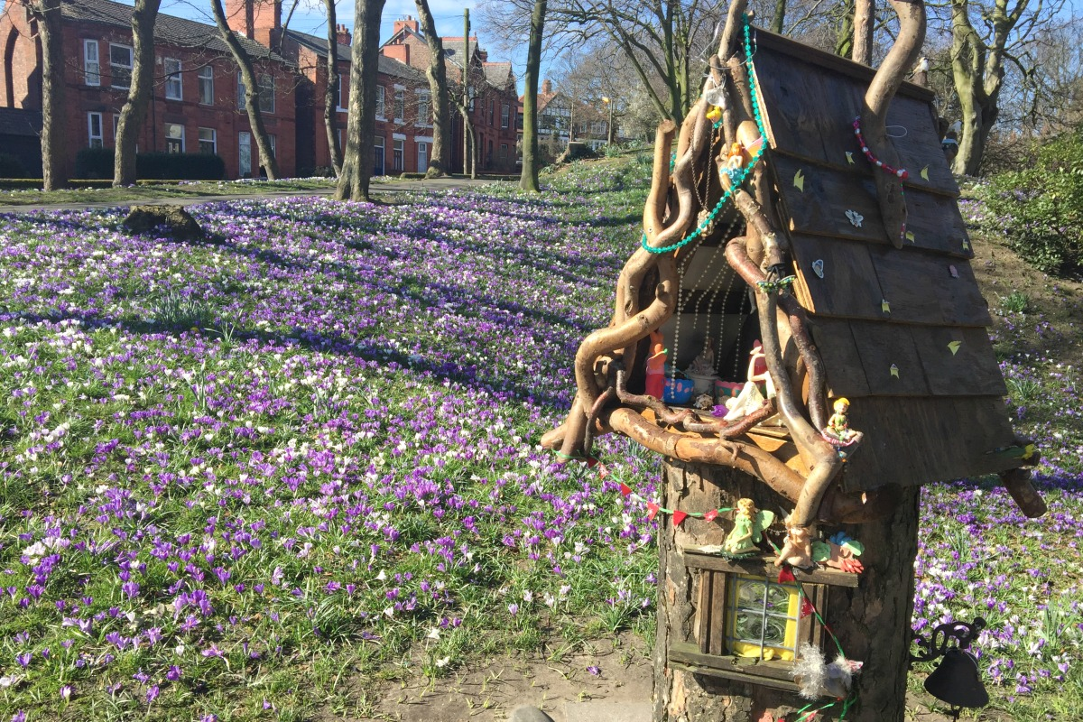 Fairy garden Vale Park