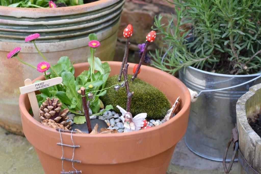 Flowerpot close-up http://rainbeaubelle.com