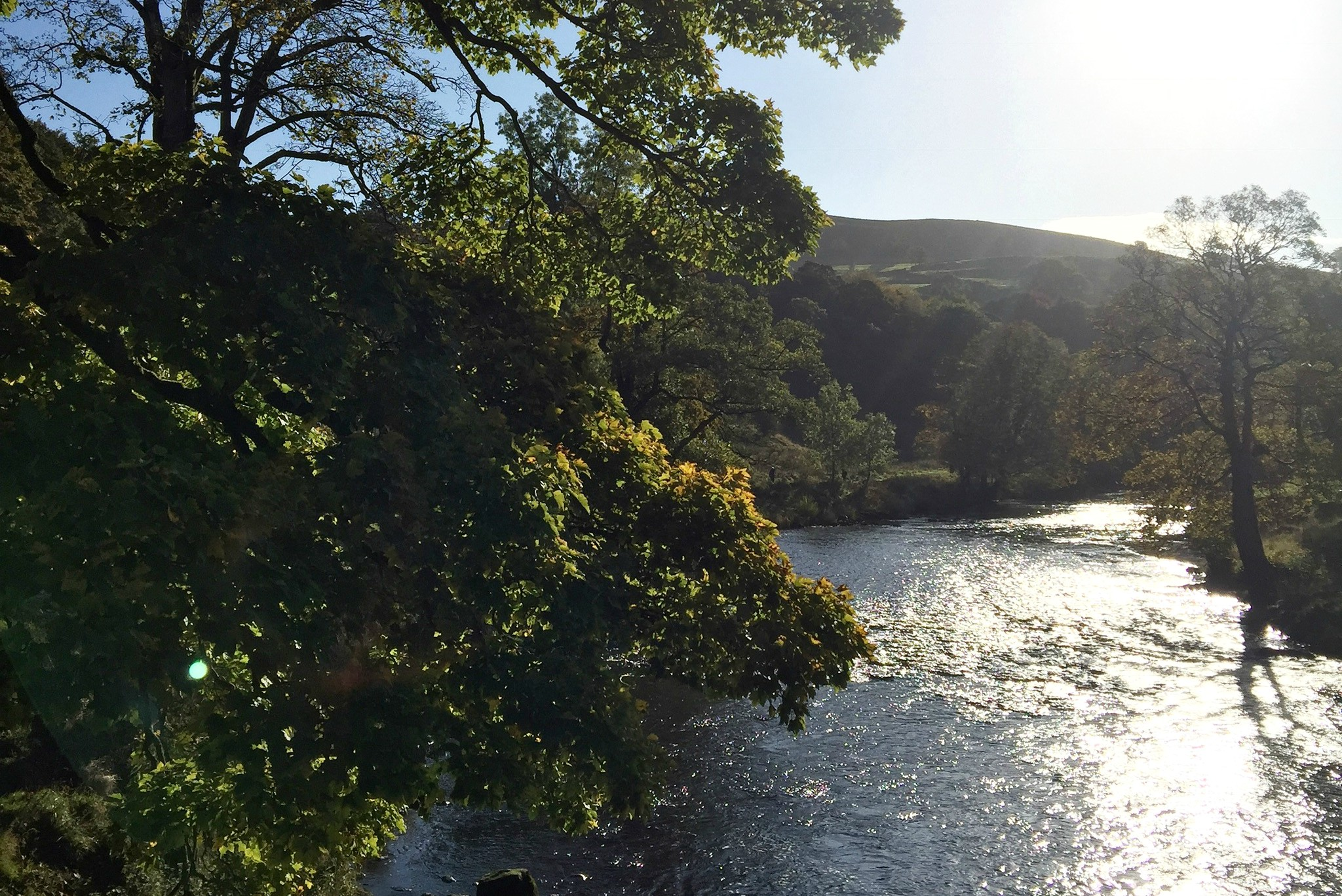 Looking over the river at Bolton Abbey