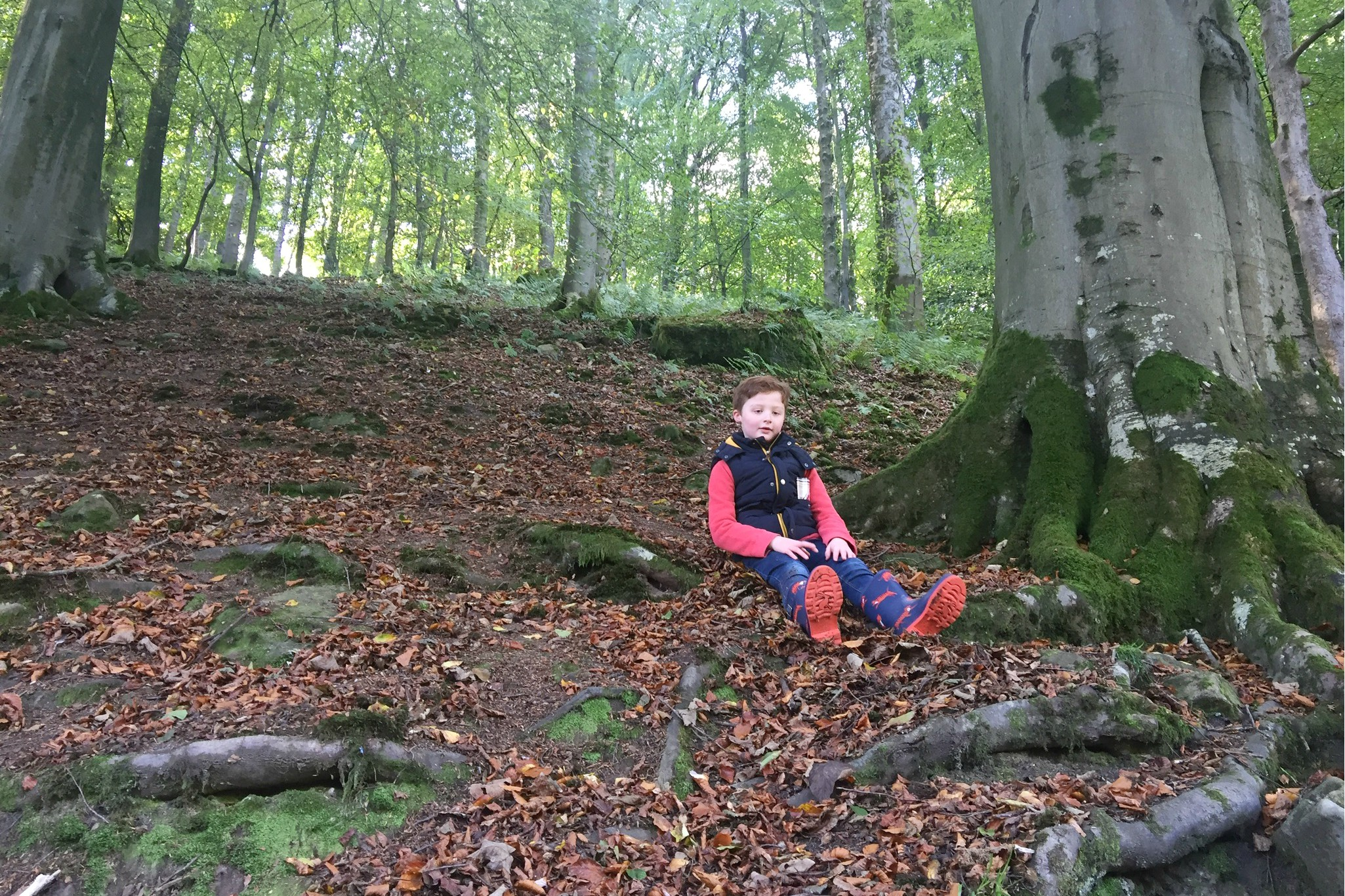 Sam in the woods