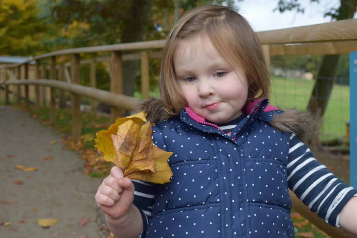 Flo with leaves