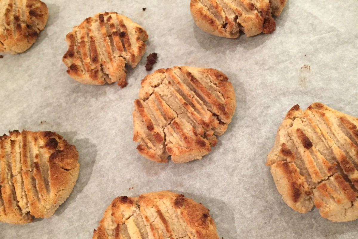 Peanut butter and coconut cookies