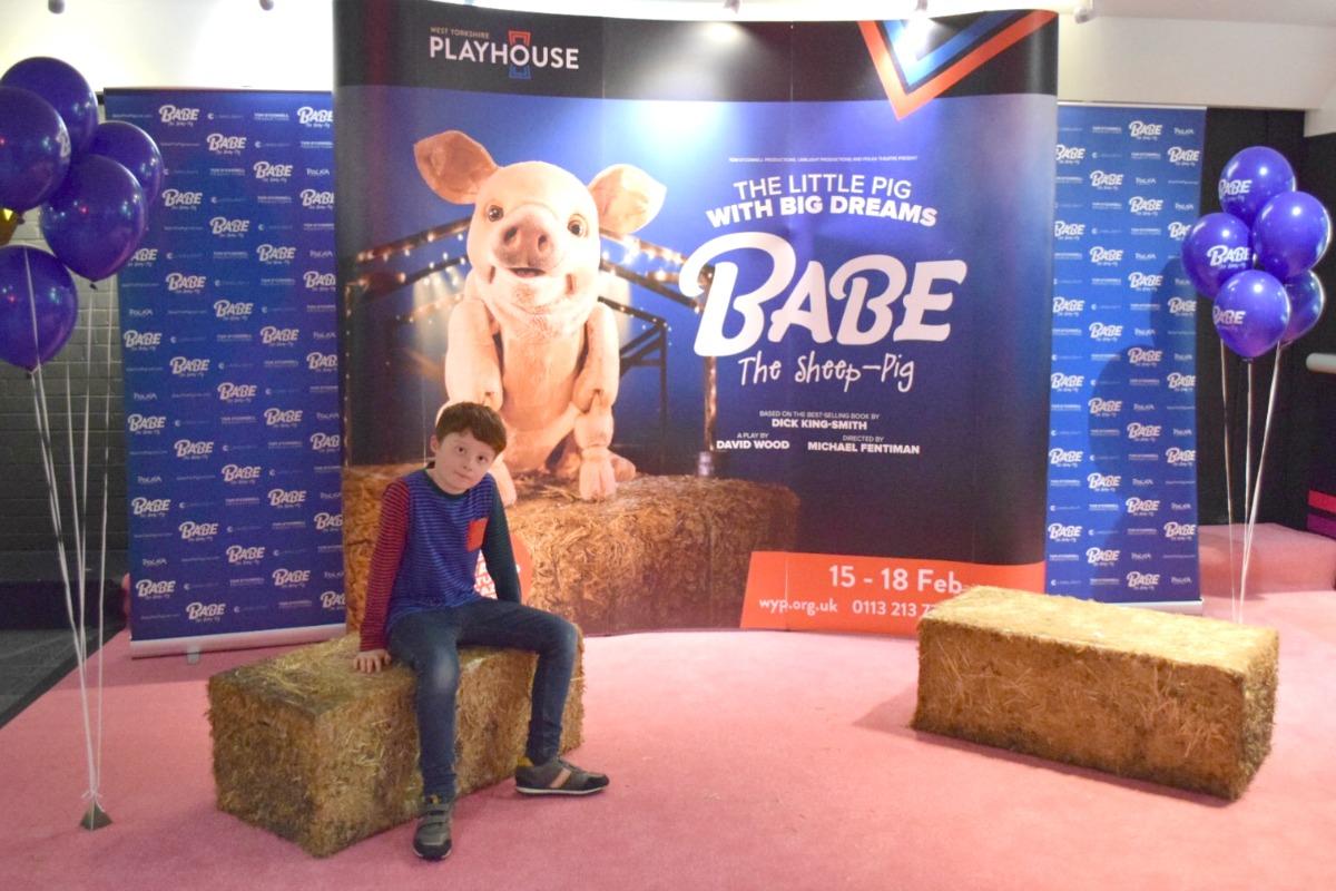 Sam on the hay bale - Babe - Rainbeaubelle