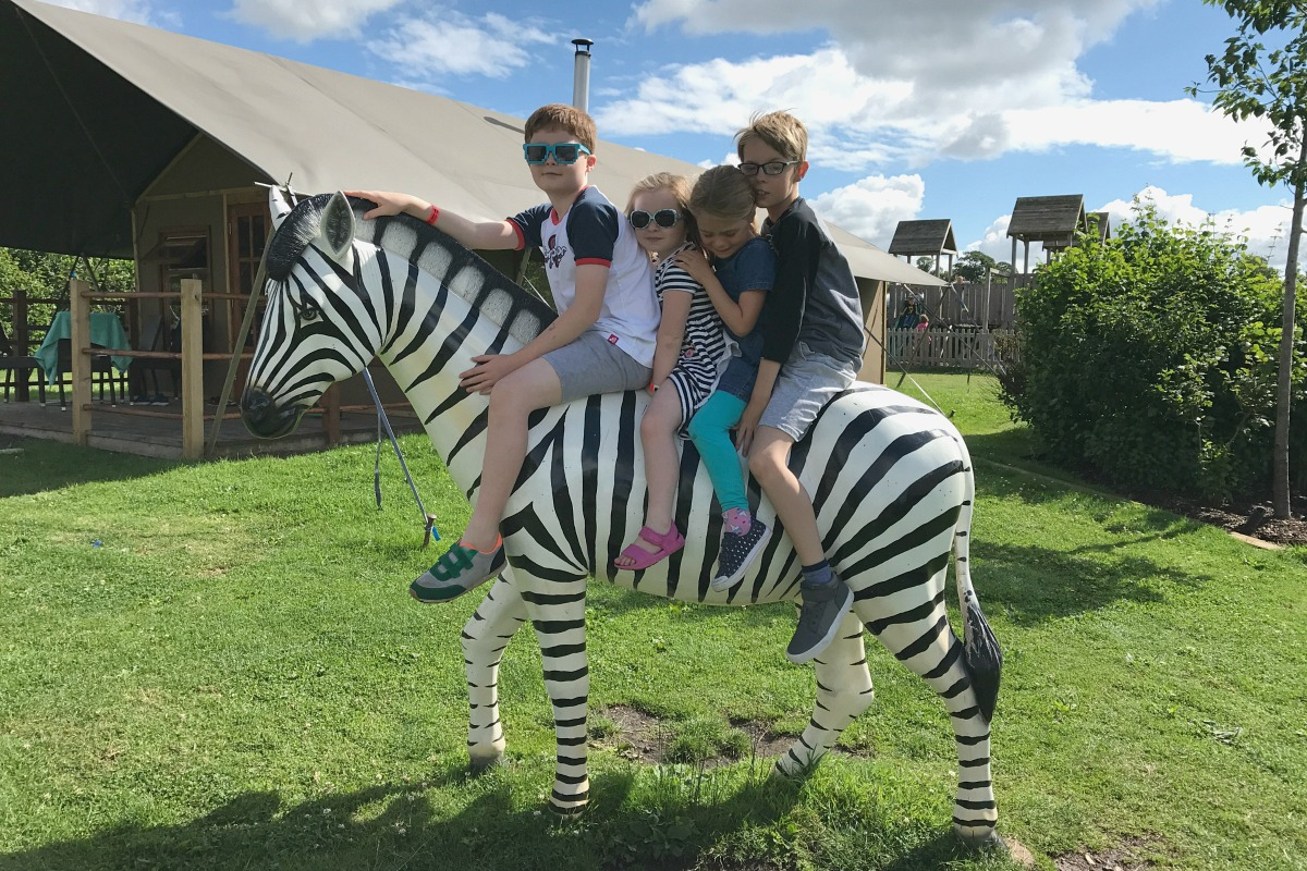 Kids on the zebra at Crealy