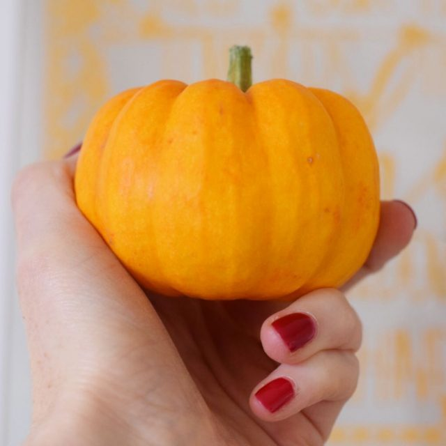 I have bought a mini pumpkin and its called ahellip