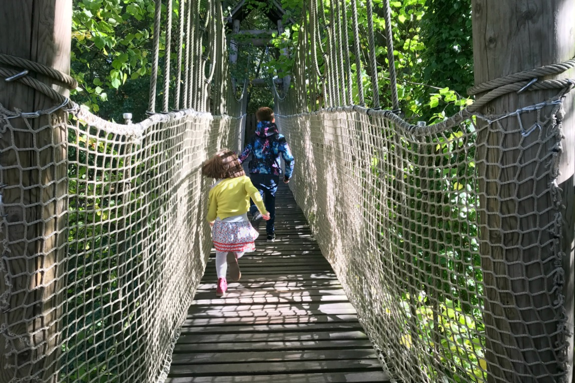 Rope bridge treehouse